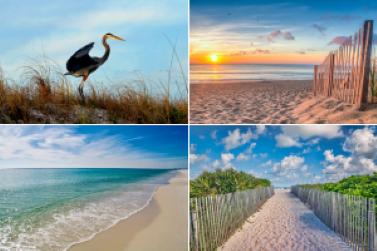Orange Beach AL Condos For Sale and beach vacation renntal homes