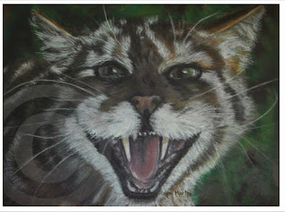 Wildlife Art and Countryside Prints
