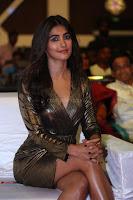 Pooja Hegde looks glamarous in deep neck sleevless short tight golden gown at Duvvada Jagannadham thank you meet function 029.JPG