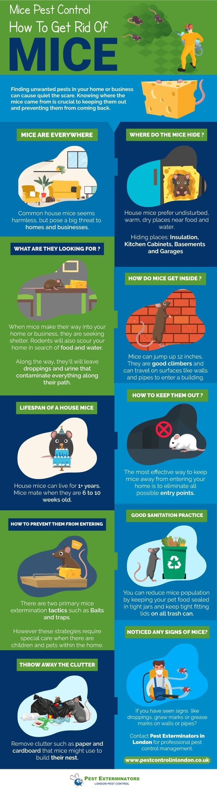 How To Get Rid of Mice? #infographic