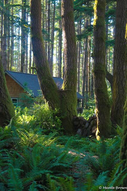 Wildspings Habitat Retreat