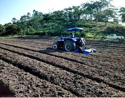 A Gestão Agrária como Desenvolvimento Sustentável local