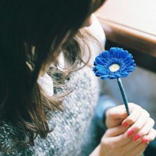 Flower Whatsapp DP