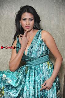 Actress Vinaya Pos at Haalu Thuppa Movie Press meet  0001.jpg