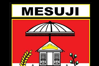 Gaji Terbaru,UMK Dan UMP Kabupaten Mesuji Provinsi Lampung Tahun 2020 naik 8,51 %