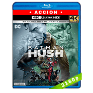 Batman: Hush (2019) Ultra HD BDREMUX 2160p Latino