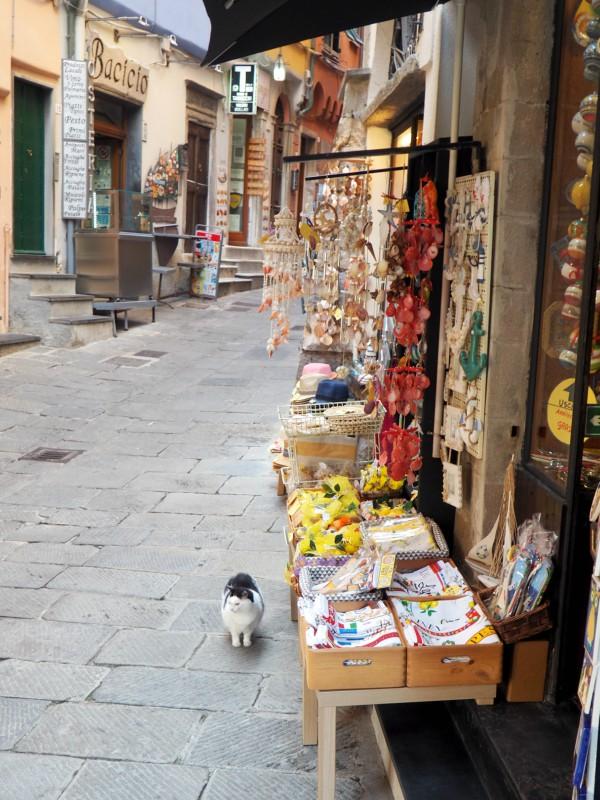 porto venere souvenir shop