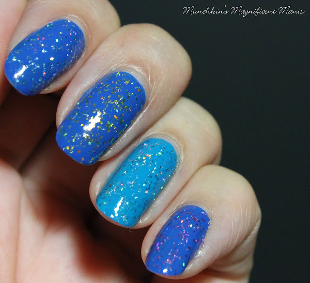 Holo Taco 1st Anniversary Collection, over blues
