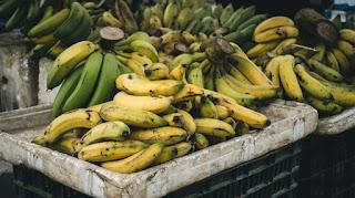 Veja lista de produtos para agricultura familiar com descontos