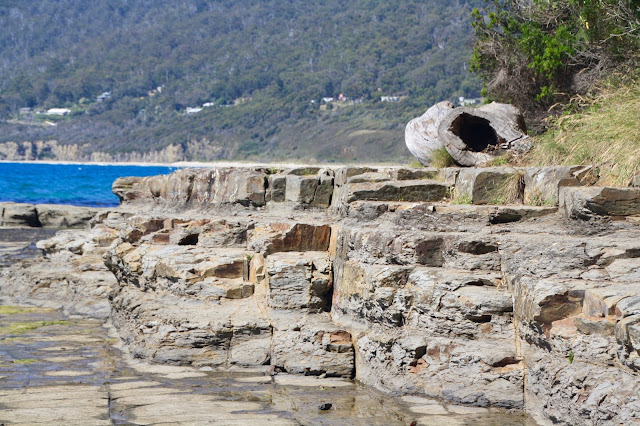Tesselated Pavement Tasmania