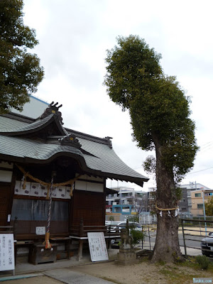 鼻川神社ご神木