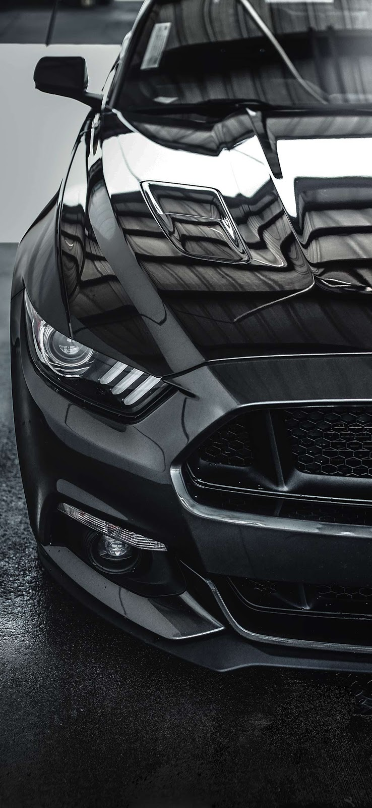 black mustang car front wallpaper