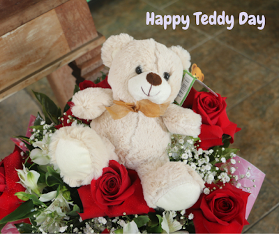 teddy day wishes images