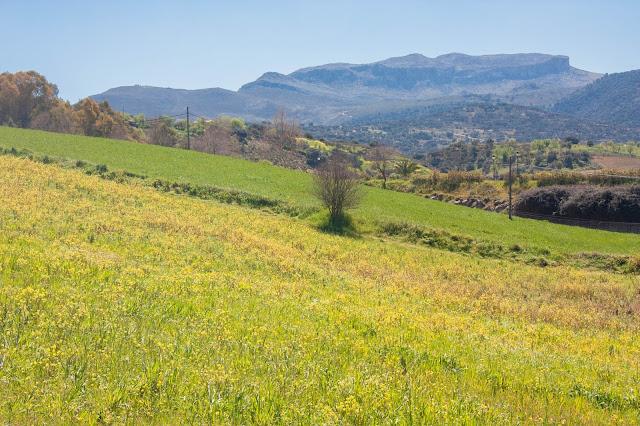 Paisagem rural de Ronda, na Ronda, na Andaluzia, região sul da Espanha.