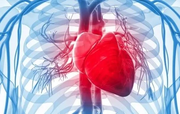 عدم انتظام دقات القلب: ما هو والأعراض والأنواع والعلاج