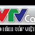 VTVCab, Truyền hình cáp VTV, Truyền hình cáp TW, Truyền hình cáp Việt Nam là gì ?