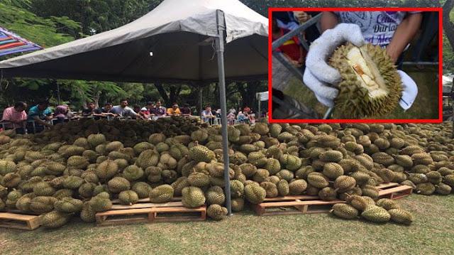 Siapkan 15 Ton Durian, Panitia Festival Durian Harus Merugi Sebesar Rp 622 Juta Karena Alasan Ini