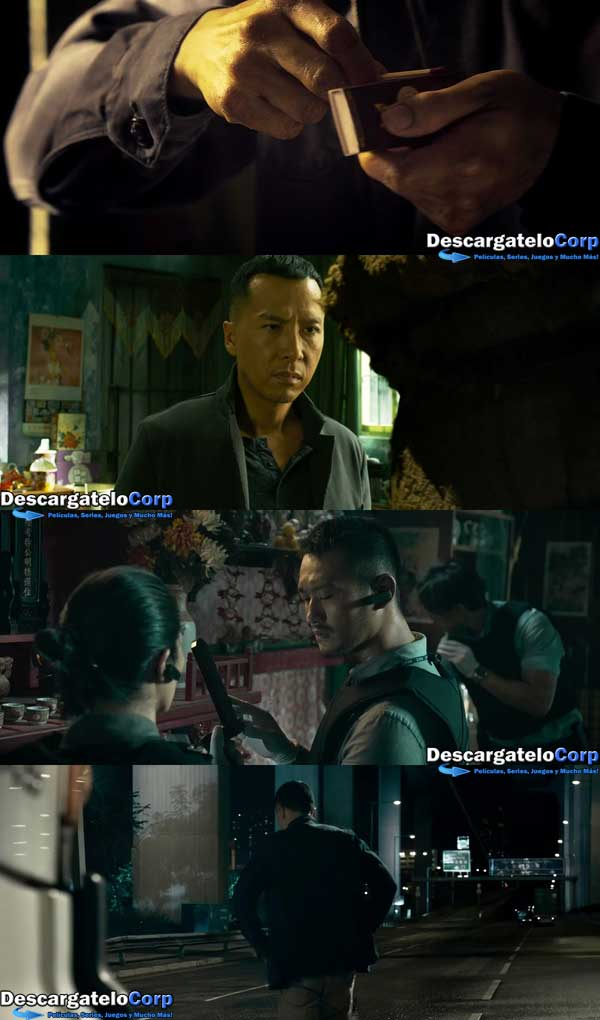 Kung Fu Jungle HD 720p Latino