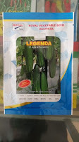 manfaat timun rebus, mentimun legenda f1, benih royal seed, pohon timun, jual benih timun, toko pertanian, toko online, lmga agro