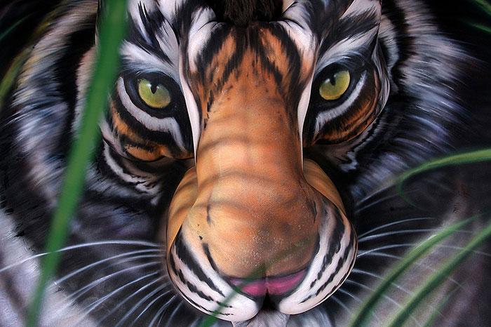 amazing-body-tiger