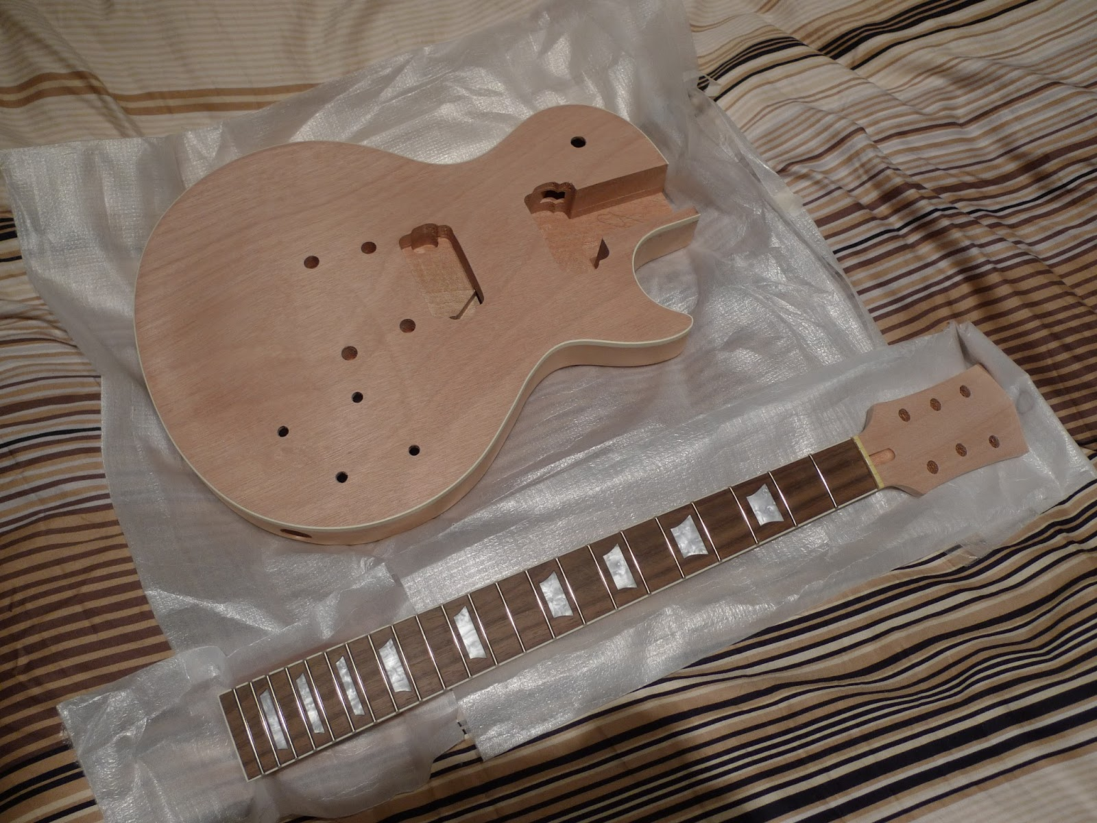sr system audio kit diy guitare type les paul. Black Bedroom Furniture Sets. Home Design Ideas
