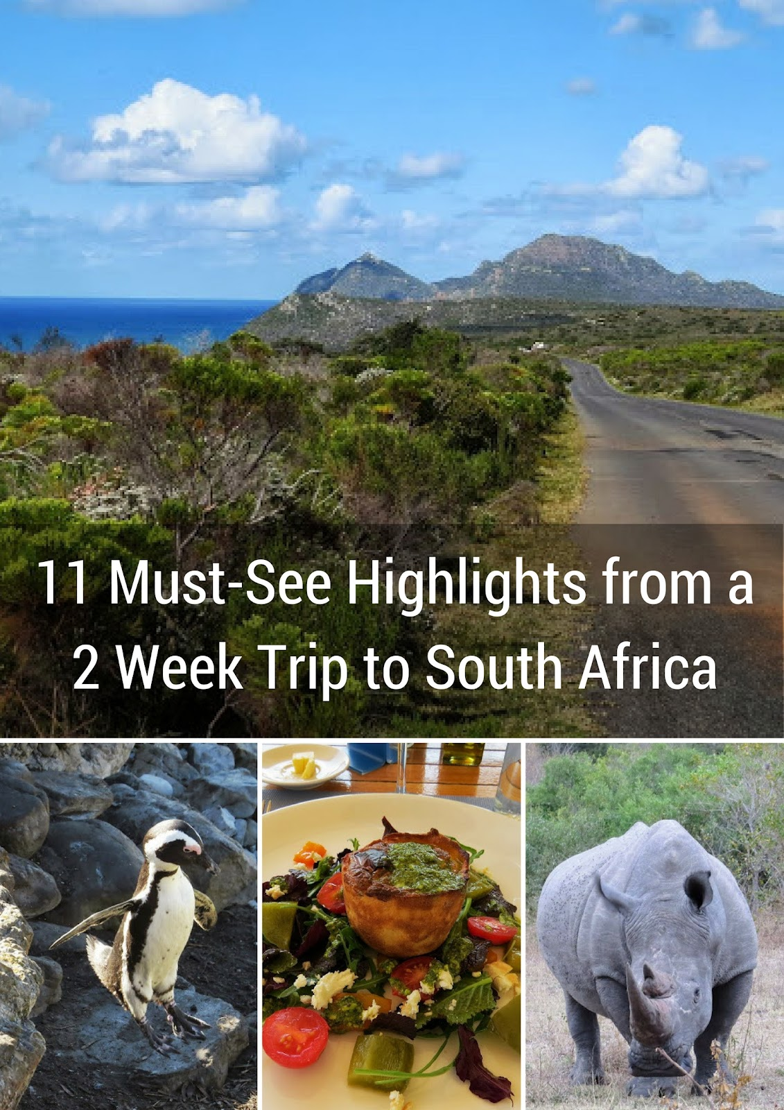 11 Things Not To Miss In South Africa In Two Weeks-3864