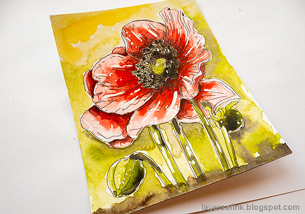 Layers of ink - Poppy Watercolor Tutorial by Anna-Karin Evaldsson. Remove the masking fluid.