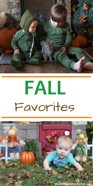 Fall Favorites - Big Family Blog - Down syndrome Blog - Pittsburgh Blog - Parenting Blog