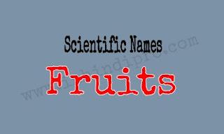 Scientific Names of Fruits