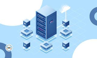 Apa itu Shared Hosting, VPS, dan Dedicated Server