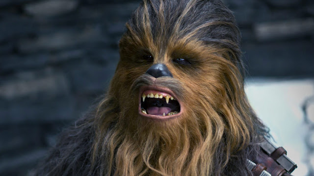 Is Chewbacca the greatest movie side-kick ever?