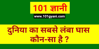 the longest Grass in the world, which Grass is longest in world, ias interview gk