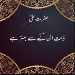 islamic status video download,