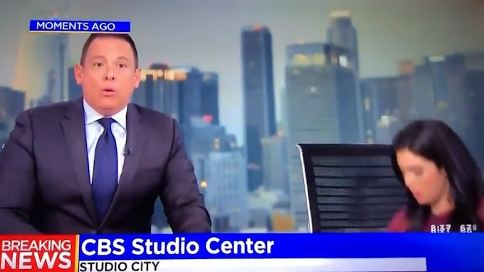 Video: News presenter hides under desk on live TV as 7,1 earthquake hits Southern California