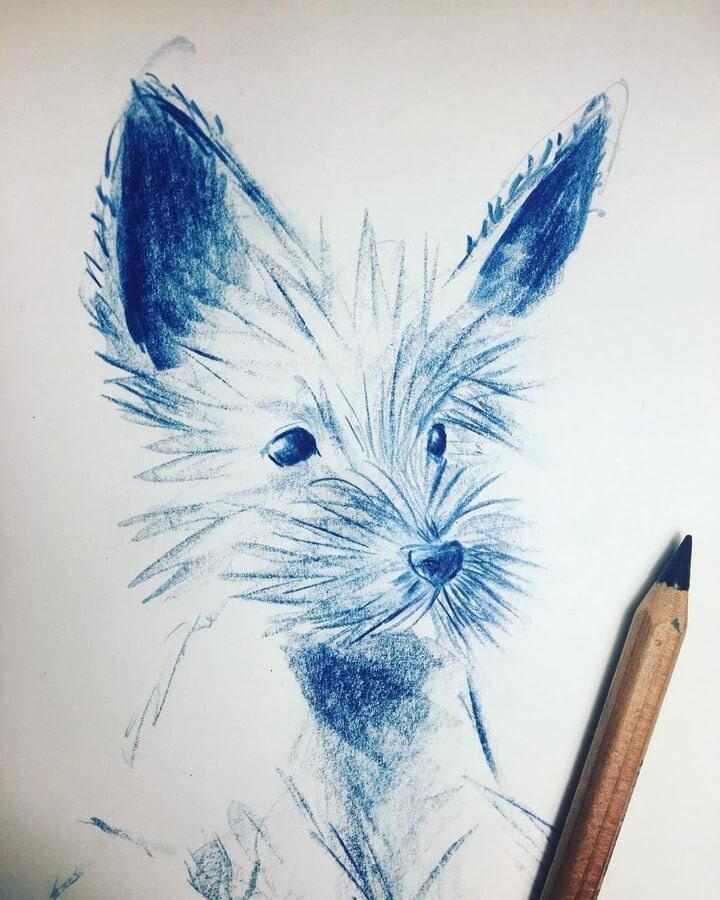 04-Sweet-puppy-Farbe-Und-Fabeln-www-designstack-co