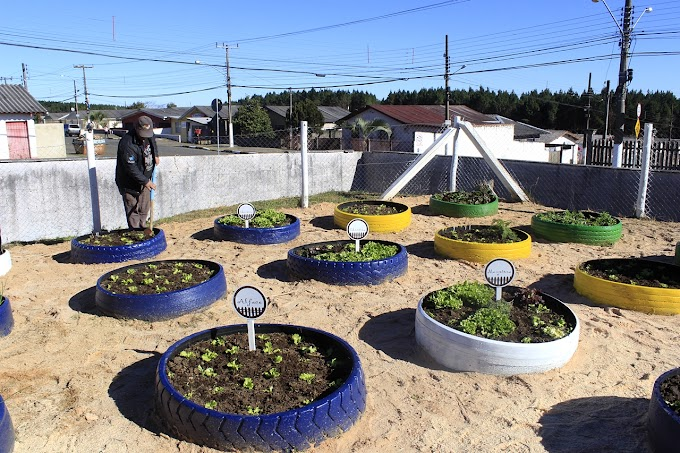 Unidade de Saúde do bairro Bela Vista ganha a 41ª horta do Projeto Colheita Feliz