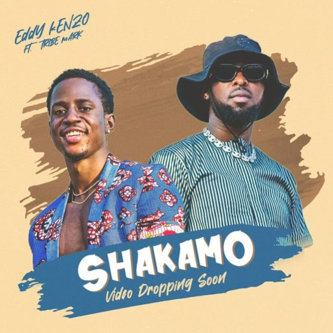 AUDIO | Eddy Kenzo Ft Tribe Mark – Shakamo | Download New song