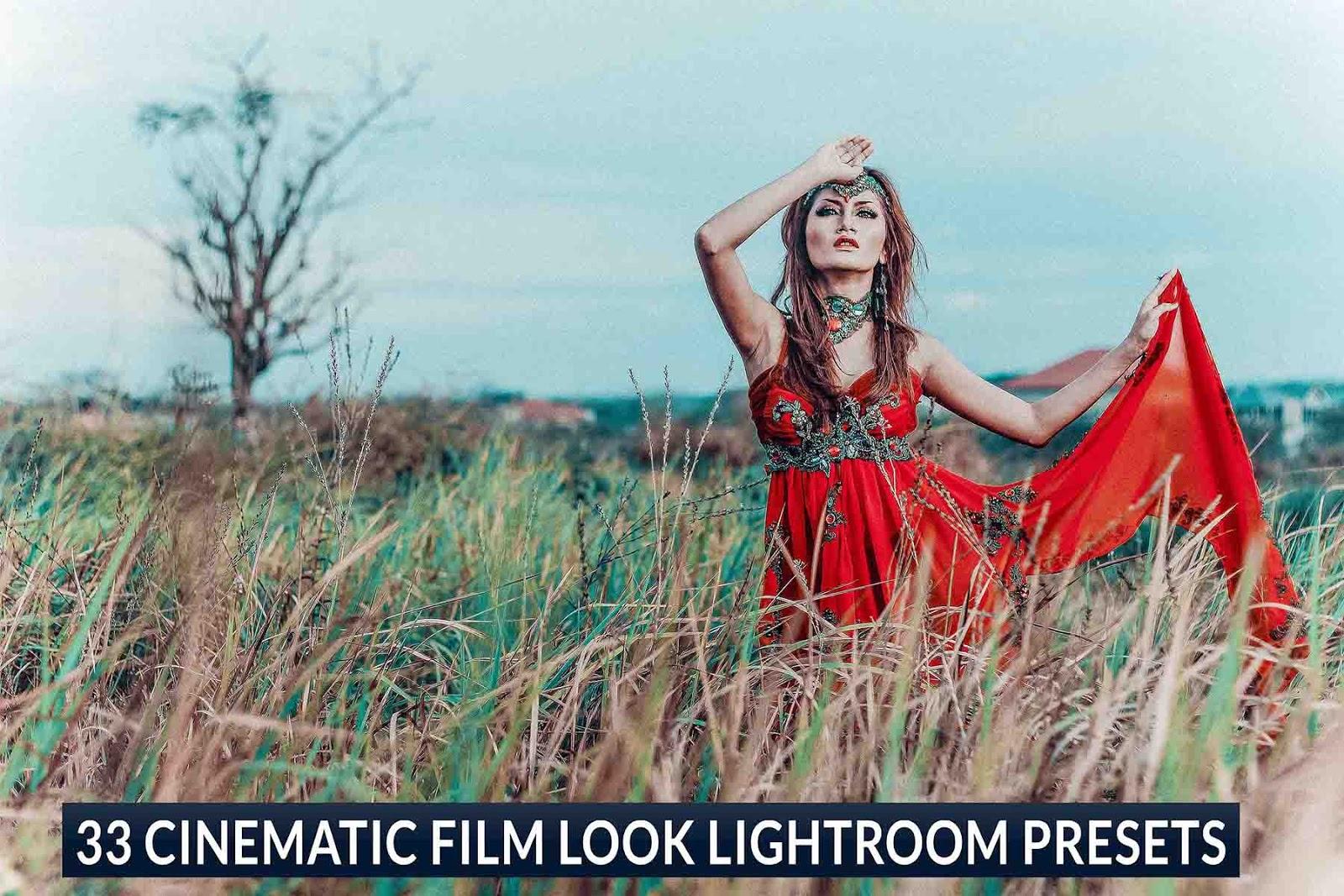 Best 33 Cinematic Film Look Free Lightroom Presets