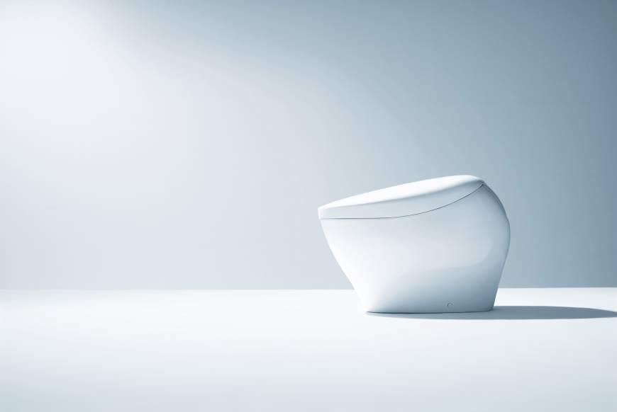 Thiết bị vệ sinh Toto bồn cầu giá 250 triệu đồng có gì đặc biệt 1