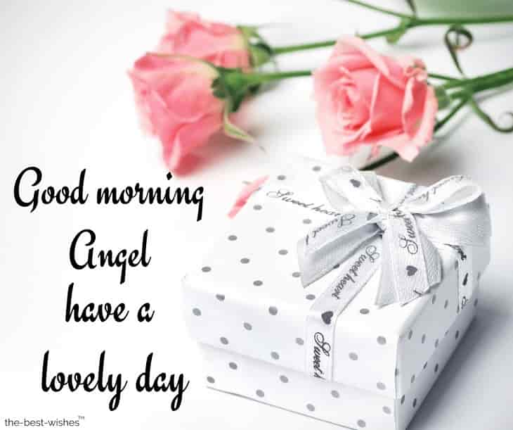 good morning angel have a lovely day