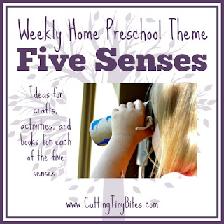 Five Senses- Homeschool Preschool