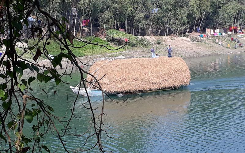 Beautiful Bangladesh: Traders carrying hay by boat to feed