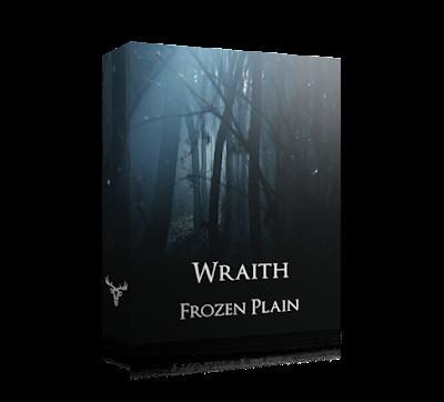 Frozen Plain Wraith