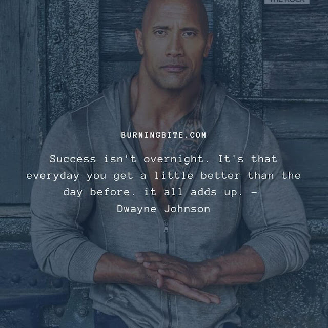 Success isn't overnight. It's that everyday you get a little better than the day before. it all adds up. - Dwayne Johnson
