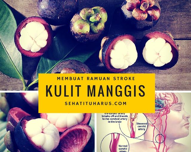 Membuat Ramuan Obat Stroke Dari Kulit Manggis