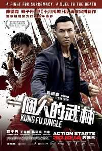 Kung Fu Jungle 300mb Hindi Dubbed Movies Download