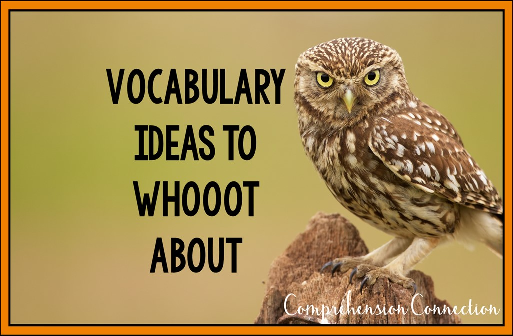 In this post, we take a look at vocabulary teaching ideas that you can easily implement into your daily plans.