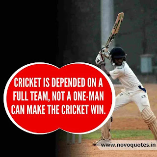 Quote About Cricket