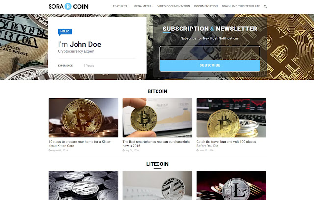 Sora Coin Responsive Business Portfolio Personal Blog Expert Blog Information Blogger Template Theme