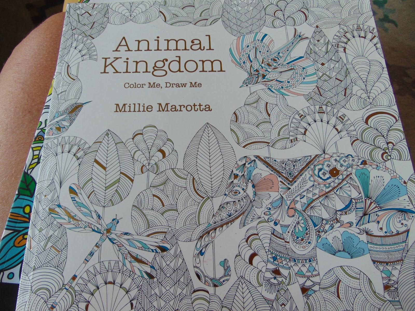 Co color to draw - Animal Kingdom Color Me Draw Me